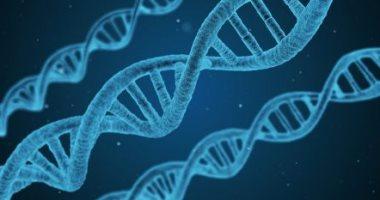 مرض وراثى نادر, اسباب المرض الوراثي. اعراض المرض الوراثي