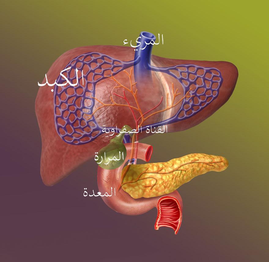 التهاب القناة الصفراوية