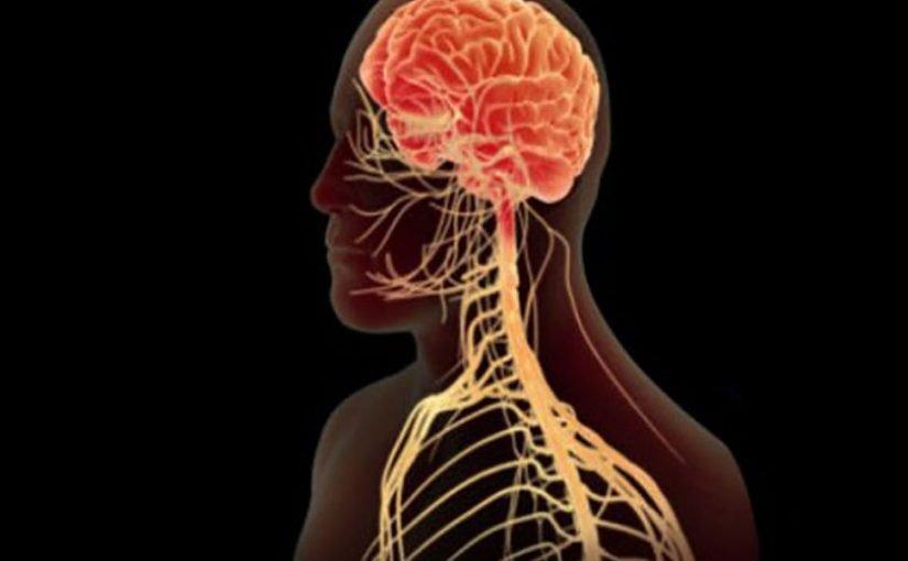 العصب السمبثاوي, ماهو العصب السمبثاوي , اعراض العصب السمبثاوي